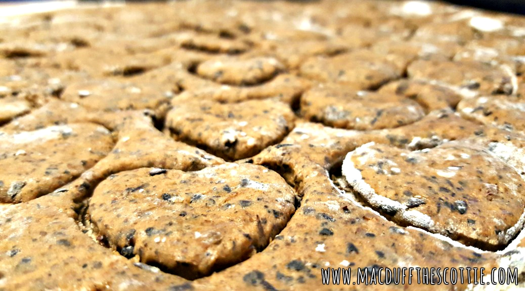 How To Make Dog Biscuits From Beer Grains